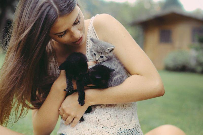 Девушка обнимает котиков