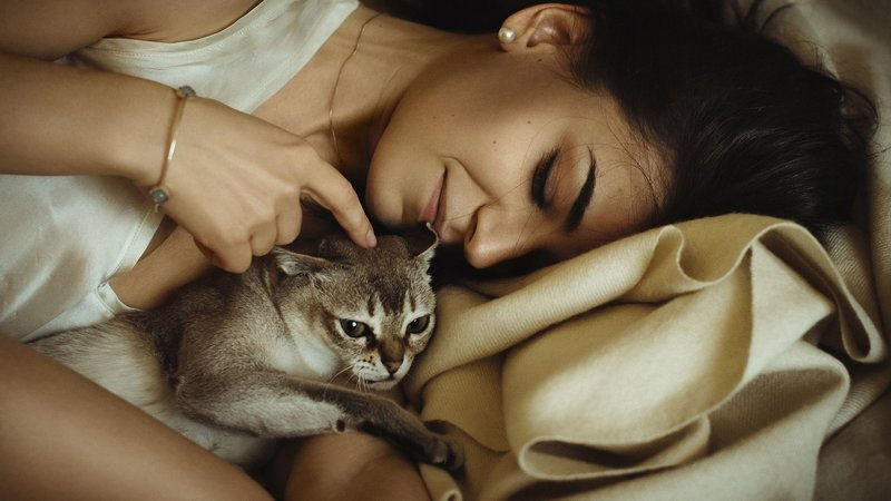 Девушка спит с котом