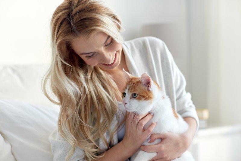 Блондинка и кот