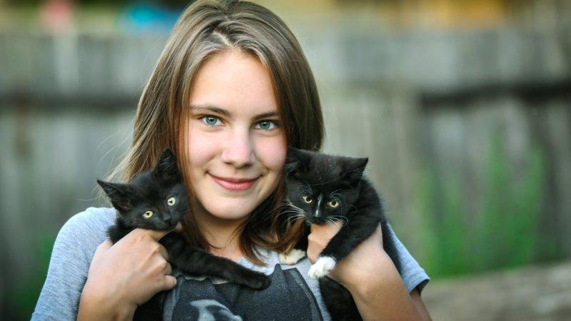 Девочка с двумя котиками