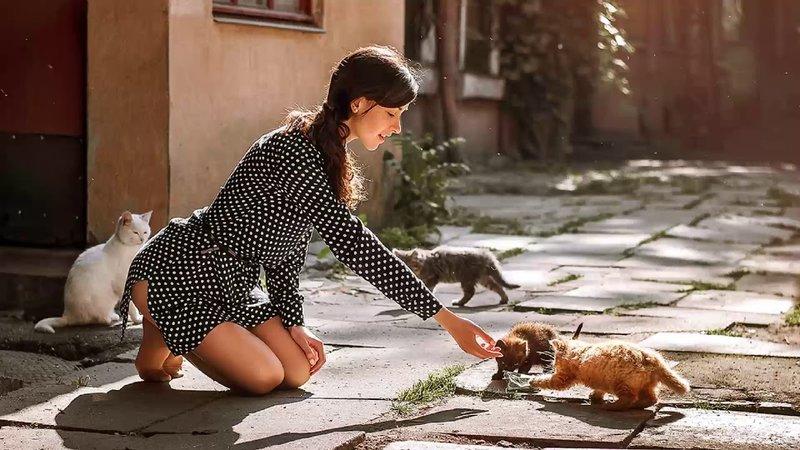 Девушка с котиками на улице