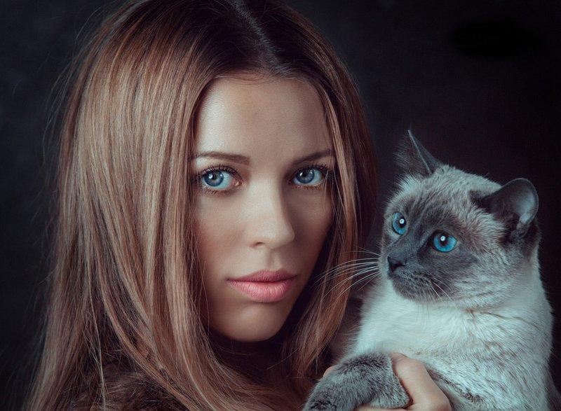 Девушка и кот с голубыми глазами