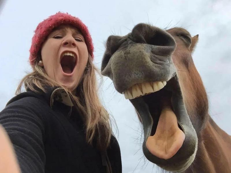 Селфи с лошадью