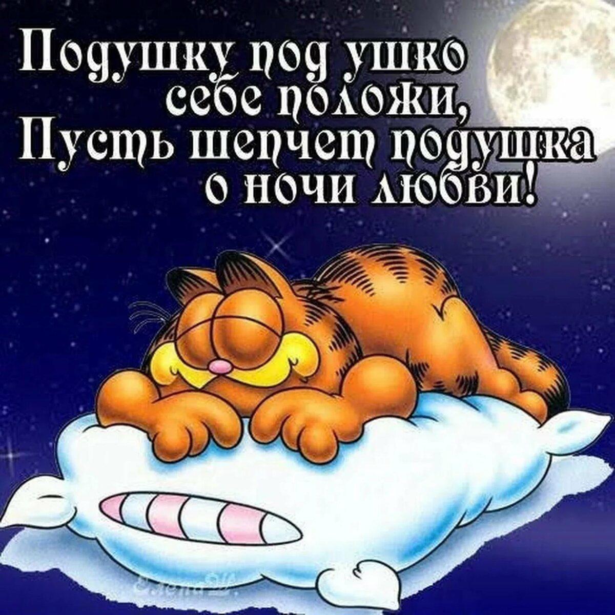 Картинки спокойной ночи красивые с юмором