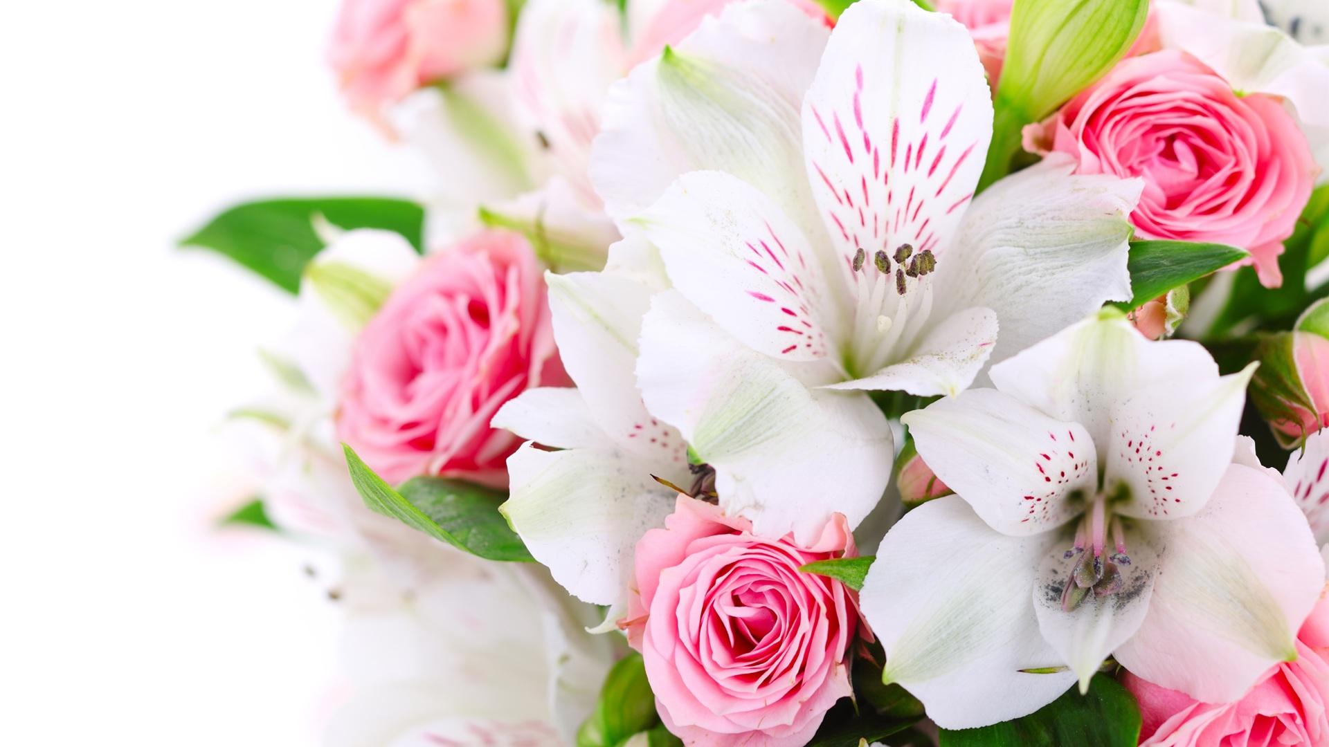 Открытки с цветами на белом фоне 17