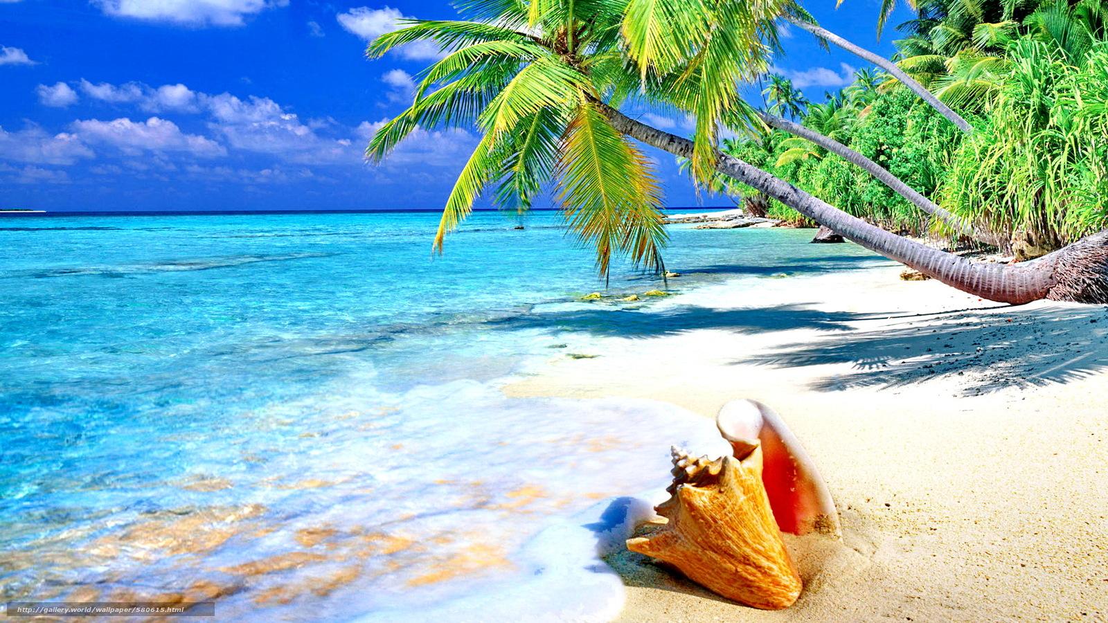 обои на рабочий стол берег пляж № 646492 загрузить