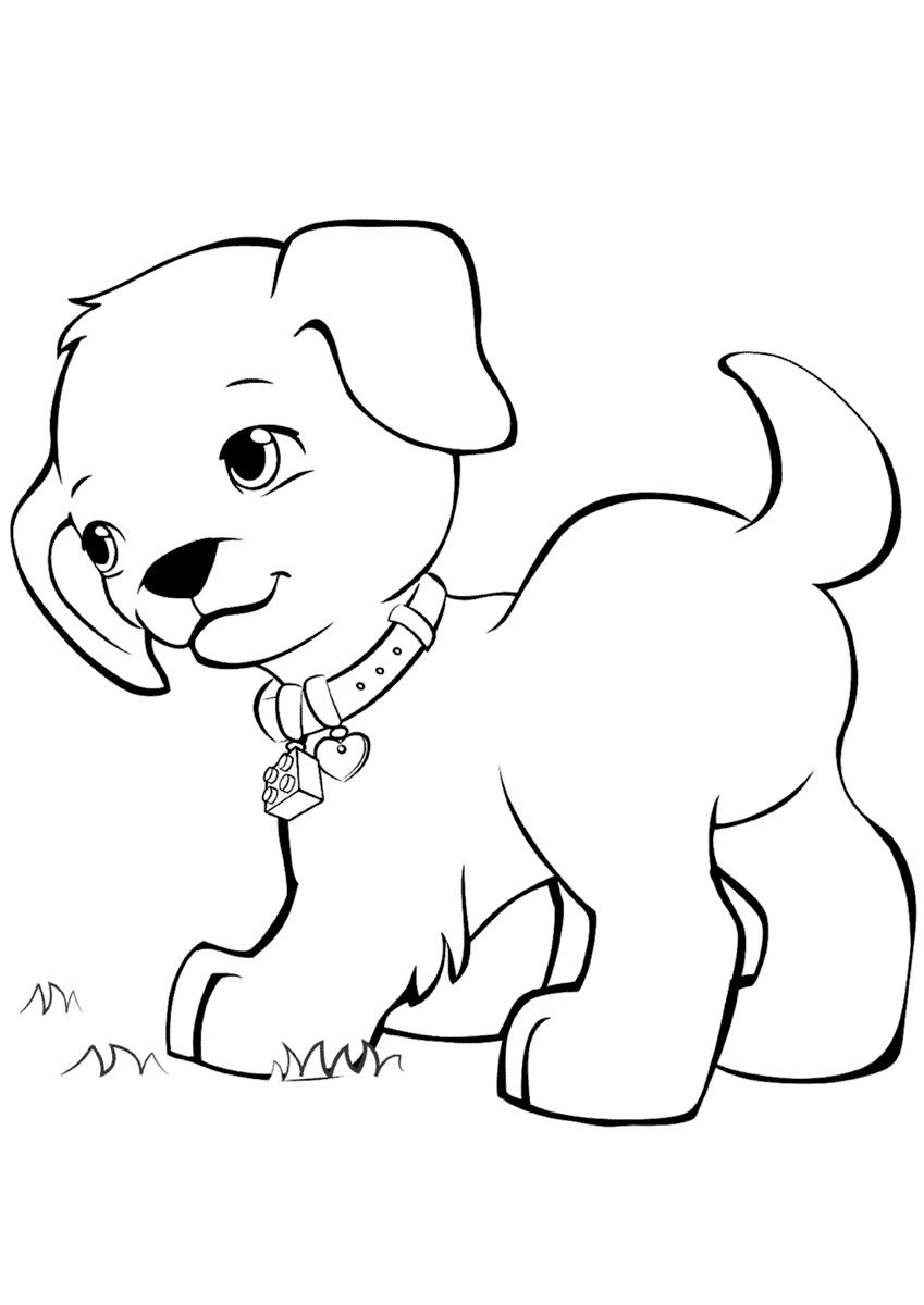 Картинки для раскраски для детей - животные